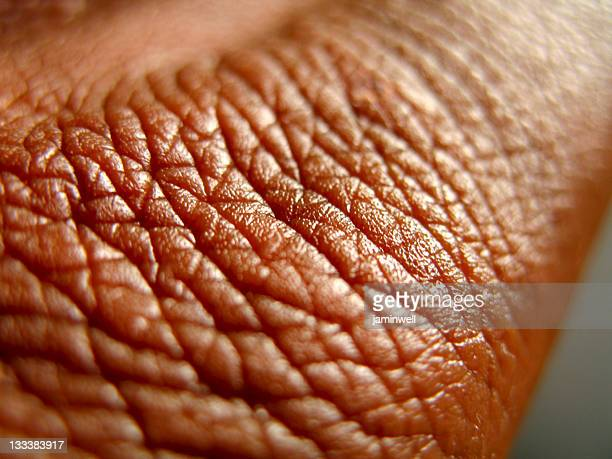 healthy brown skin close up - pores stock photos and pictures