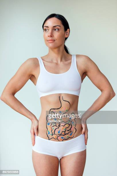 healthy digestive track - human intestine stock photos and pictures