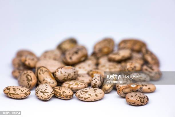 healthy eating, pinto beans, close-up. raw food ingredient - pinto bean - fotografias e filmes do acervo