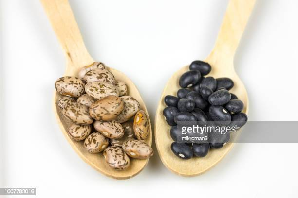 healthy eating, variety of legumes, beans. - pinto bean stock photos and pictures