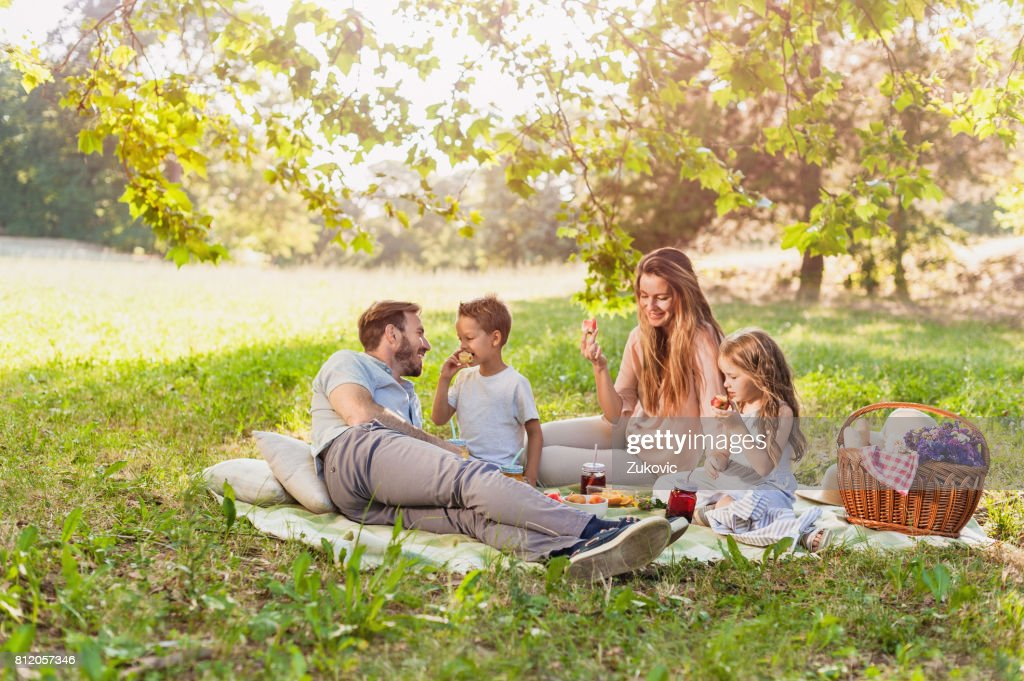 Healthy Family enjoying summer picnic in the nature : Stock Photo