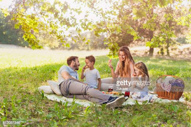 Healthy Family enjoying summer picnic in the nature