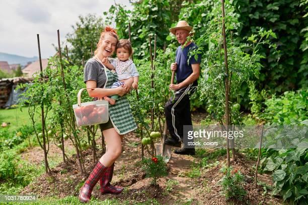 hälsosam familj i köksträdgård - rumänien bildbanksfoton och bilder