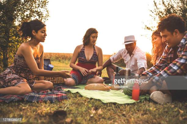 healthy food and friends to enjoy this picnic - mexican picnic stock pictures, royalty-free photos & images