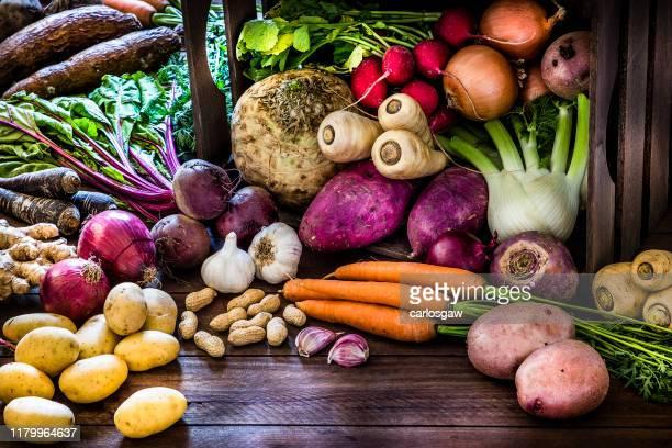 alimentos saudáveis: raízes orgânicas, leguminosas e tubérculos ainda vida. - celeriac - fotografias e filmes do acervo