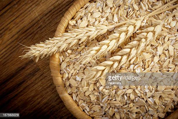 Comida saludable. Conjunto grano de avena y cereal spikelets