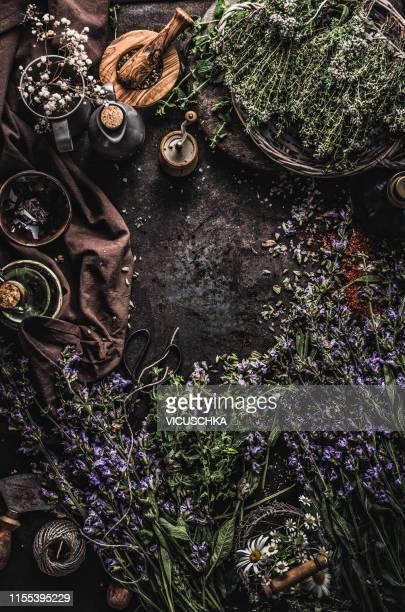 healthy fresh herbs background, top view. frame - kräuter stock-fotos und bilder