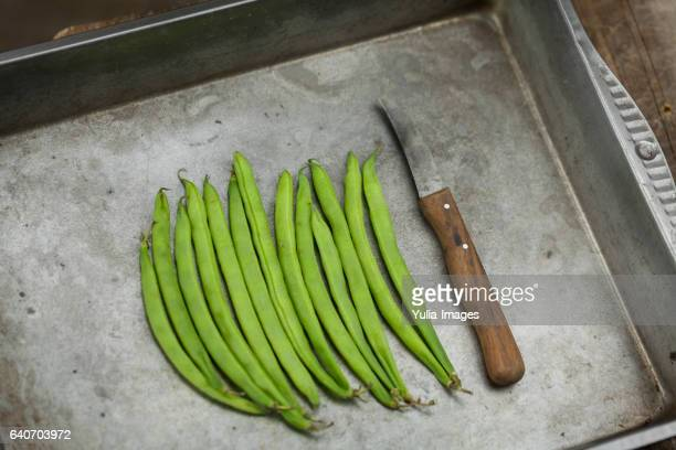 Healthy green runner beans on a metal dish