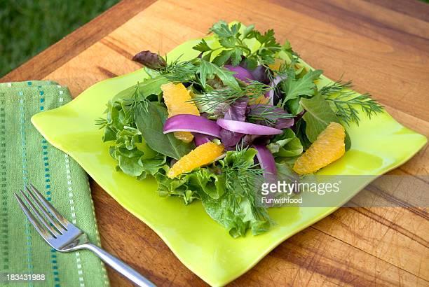 Ervas saudáveis, misturado Verdes, funcho, cebola & laranjas Primavera Salada Almoço