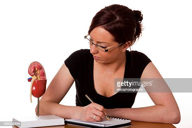 Healthy kidney