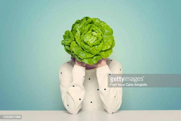 healthy life - lettuce stock pictures, royalty-free photos & images