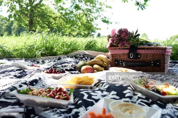 healthy picnic in a park in summer - picknick stock-fotos und bilder