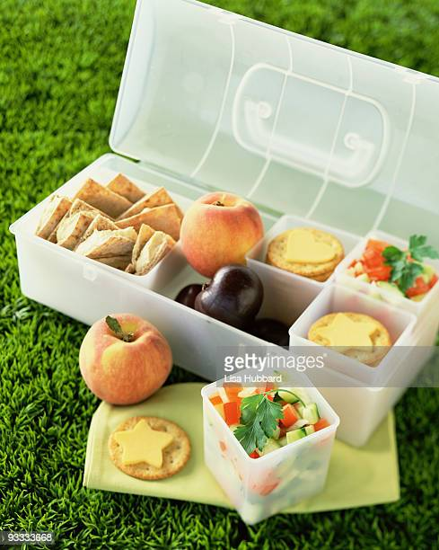 Healthy picnic lunch box