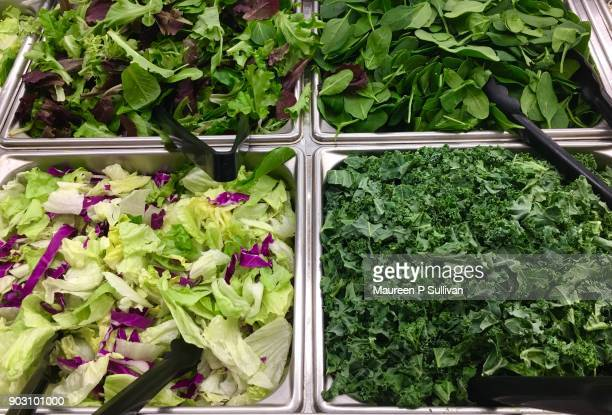 healthy resolutions - green salad stock pictures, royalty-free photos & images