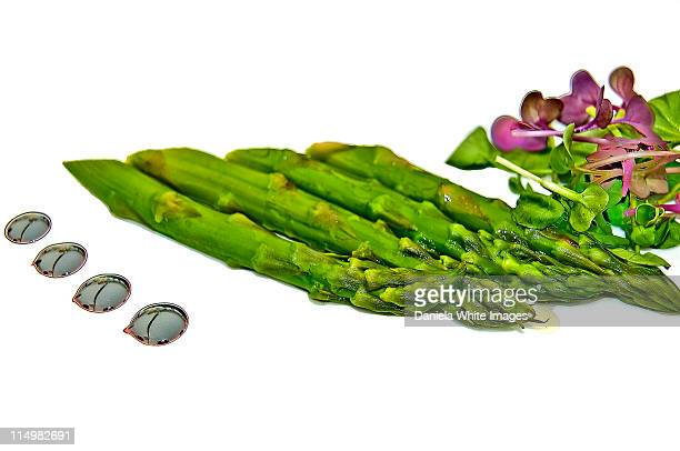 healthy starter - chelsea flower show stock pictures, royalty-free photos & images