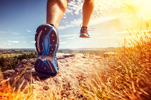Healthy trail running 528298062