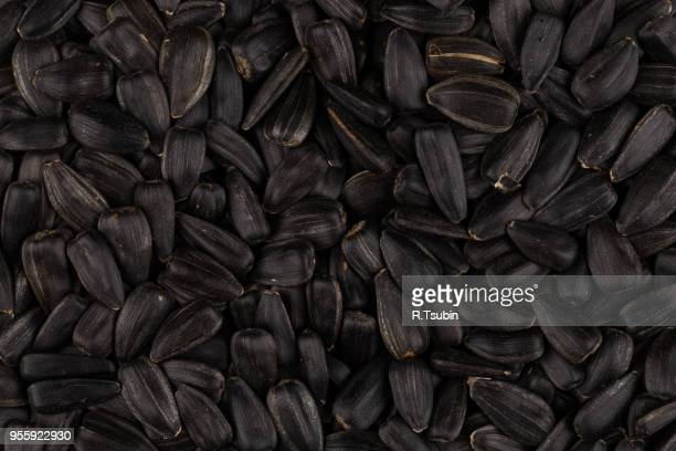 heap of black sunflower seeds as a background - black seed oil stock pictures, royalty-free photos & images