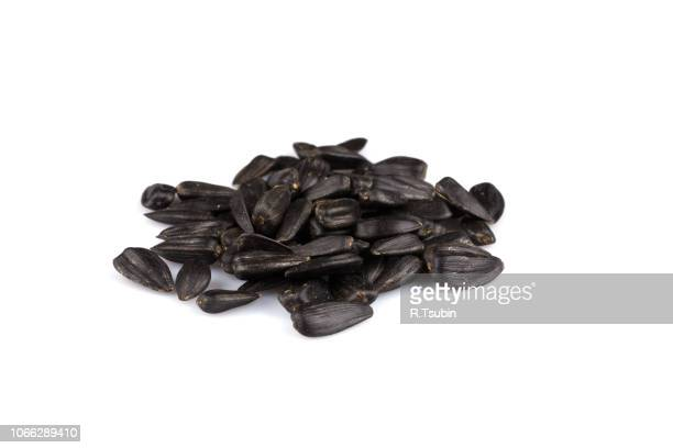 heap of black sunflower seeds - black seed oil stock pictures, royalty-free photos & images