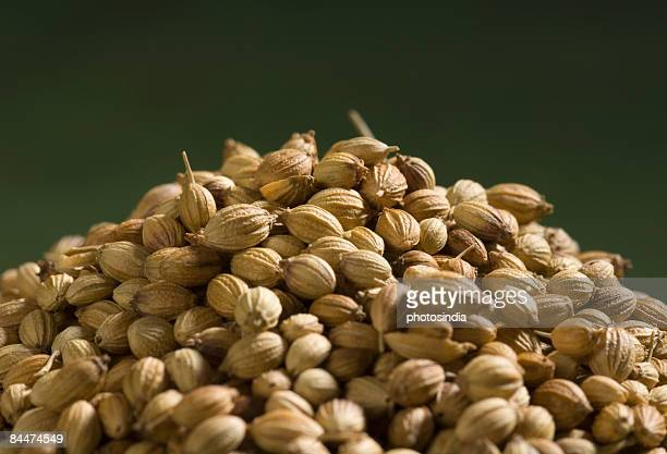 Heap of coriander seeds