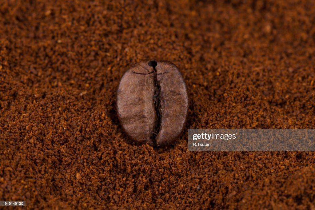 heap of ground coffee : Stock Photo