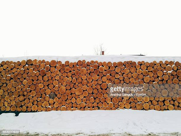 Heap Of Logs On Snow Covered Landscape