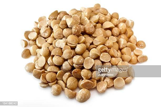 Minier de Noix de macadamia