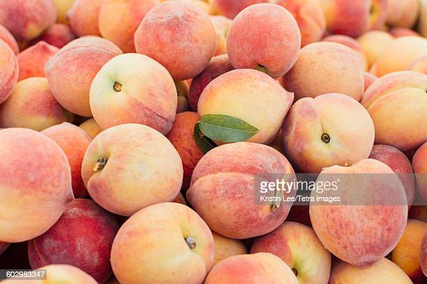 heap of peaches - peach stock photos and pictures