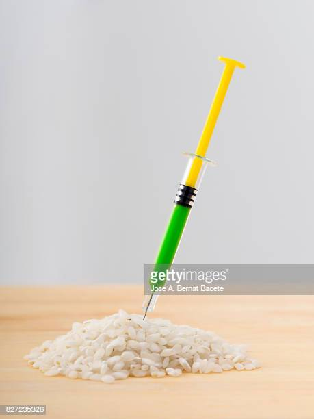 Heap of rice with a laboratory syringe nailed to an experiment ; food concept transgenic and modified genetically.