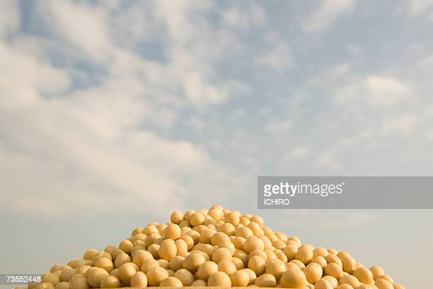 Heap of soybeans, close-up