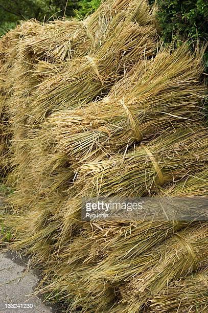 a heap of straw - 麦わら ストックフォトと画像