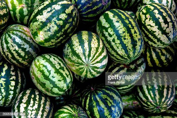 heap of watermelons, close-up - watermelon stock pictures, royalty-free photos & images