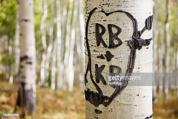 Cœur et initiales sculpté dans Tree