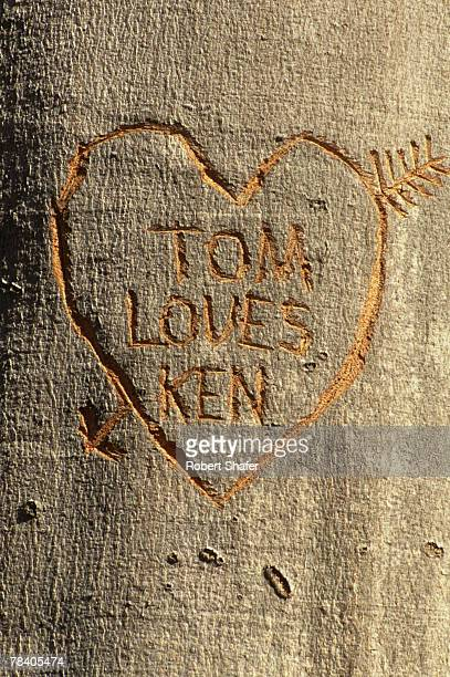 Heart and names carved into tree