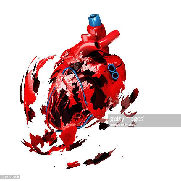 heart exploding symbolizing an heart attack - human heart stock pictures, royalty-free photos & images
