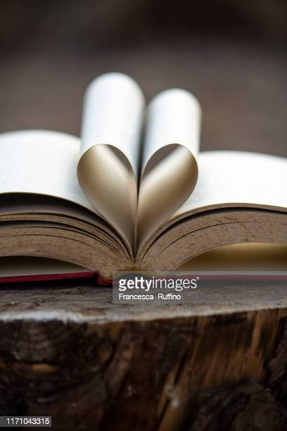 a heart for reading - poetry literature stock pictures, royalty-free photos & images