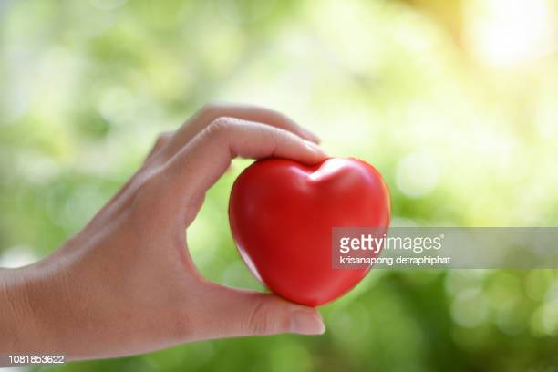 heart, heart health, heart care - heart disease stock pictures, royalty-free photos & images