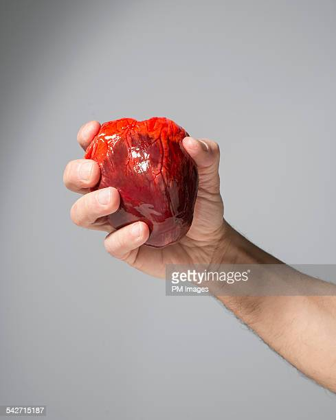 heart in hand - human heart stock pictures, royalty-free photos & images