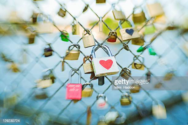 Heart Lock on the Pont Des Arts in Paris France