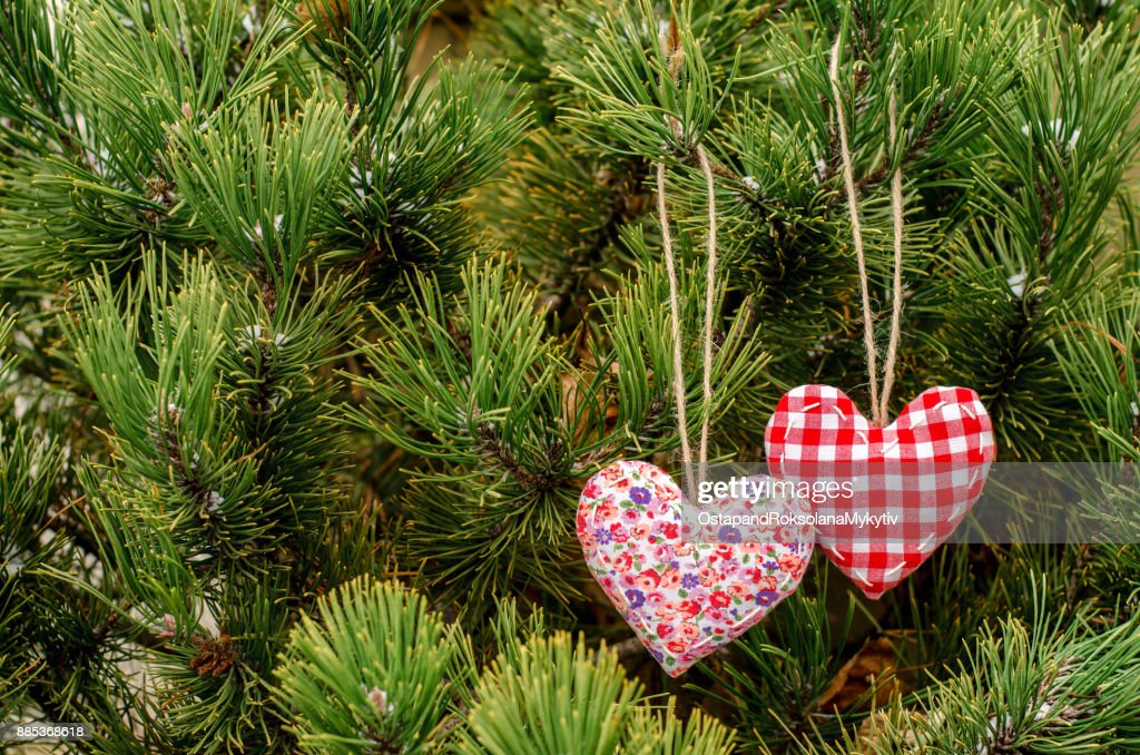 Heart Made By Hand Hanging On A Green Christmas Tree Valentines Day
