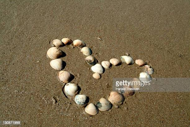 Heart made of mussels in sand on the beach of the North Sea