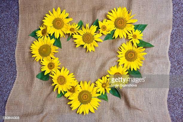 Heart made of sunflowers