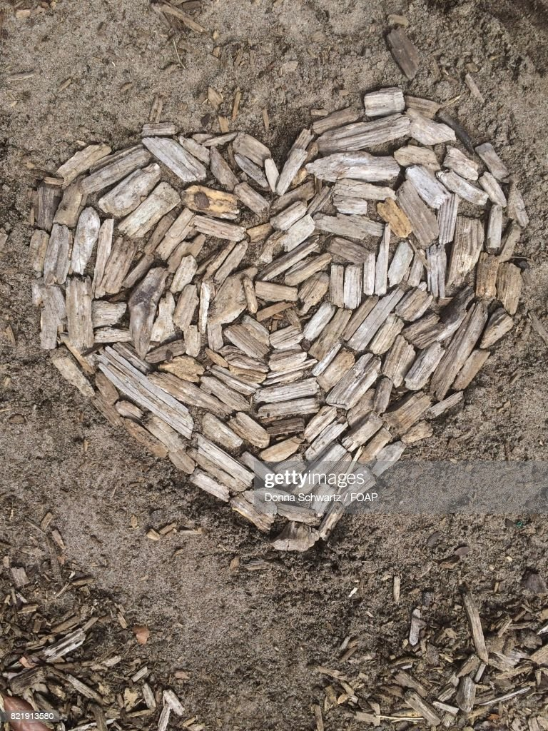 Heart made with firewood : Stock Photo