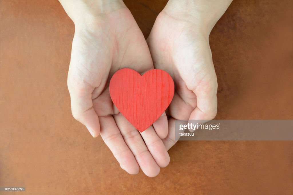 Heart object in female hands : Stock Photo