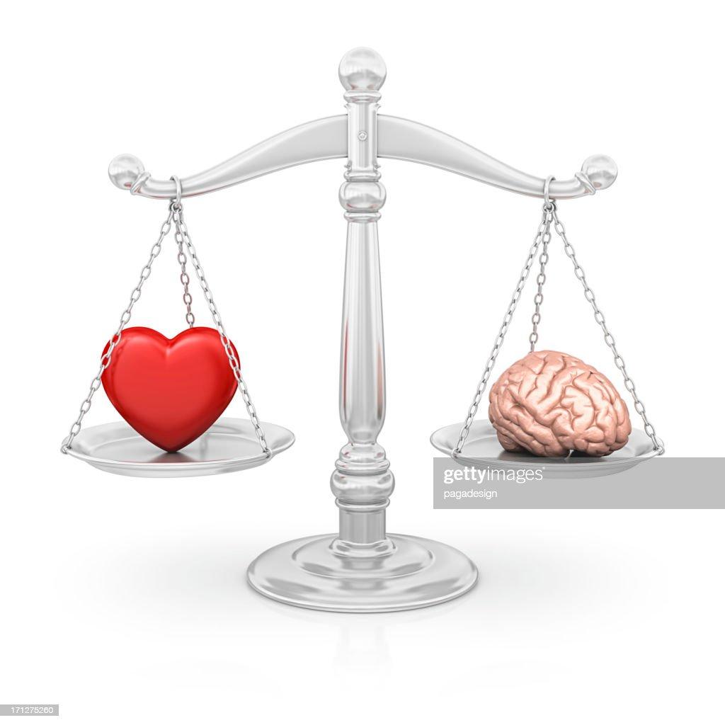 heart or brain : Stock Photo