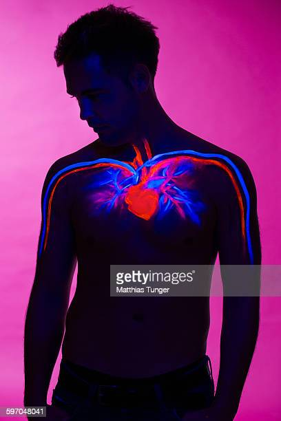 heart painted on a torso of a man - human heart stock pictures, royalty-free photos & images