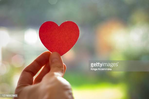 heart - giving stock pictures, royalty-free photos & images