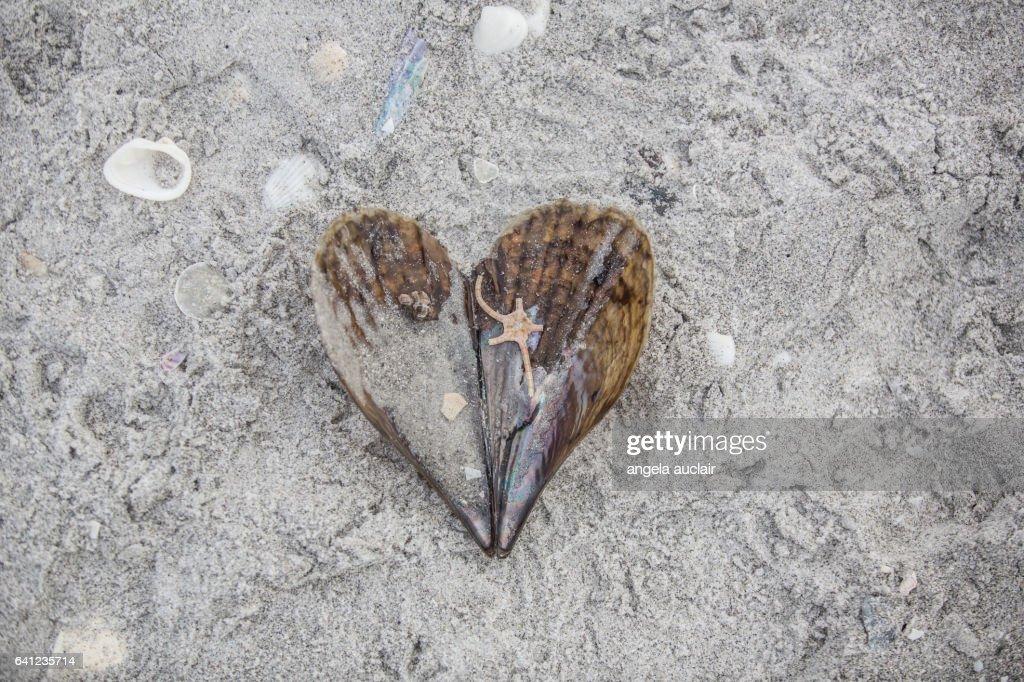 I heart ( love ) Sanibel, Florida beaches : Stock Photo