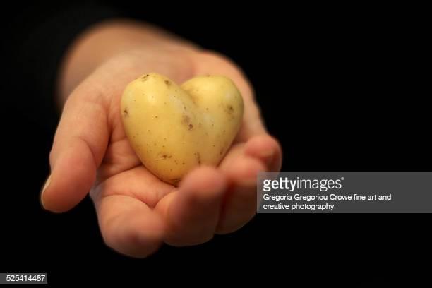 heart saped potato in hand - gregoria gregoriou crowe fine art and creative photography - fotografias e filmes do acervo