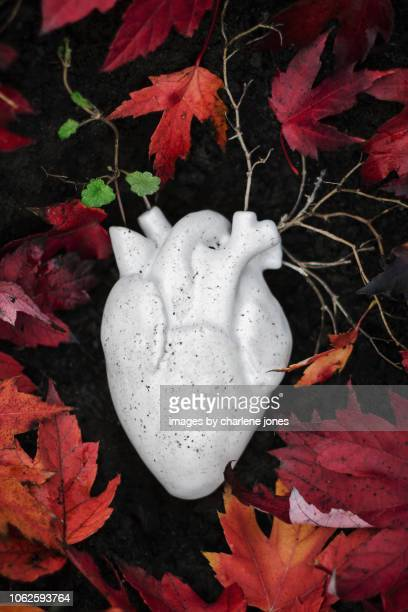 Heart Series- Roots, Vines, Leaves