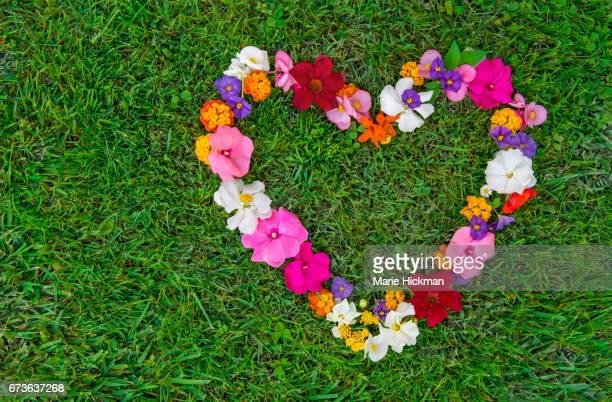 Heart shape formed with small, mulitcolored flowers laying on grass